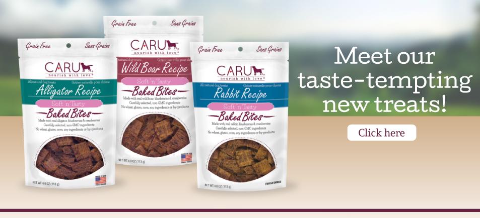 Meet Our Taste-Tempting New Treats