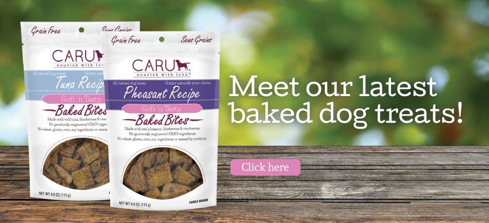 Meet Our Latest Baked Dog Treats!